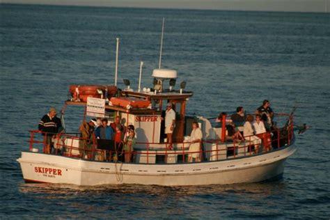 martha s vineyard fishing charters parties - Party Boat Fishing Martha S Vineyard
