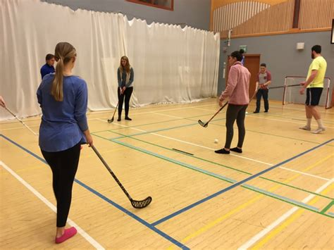 floor hockey lesson plans 100 floor hockey lesson plans adapted aquatics