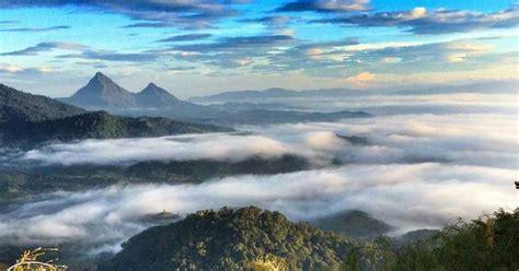 Karpet Gunung eypoh hiker s gunung pulut gerik perak