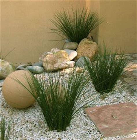 imagenes jardines minimalistas las 25 mejores ideas sobre jard 237 n minimalista en