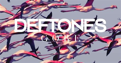 Toaster Information Deftones Official Site Official Website News Store Tour