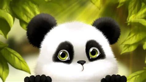 cute baby panda cartoon wallpaper  hd wallpapers