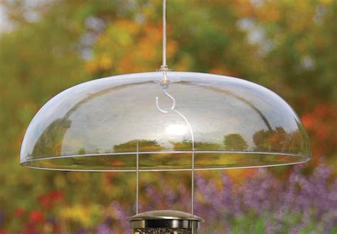 how to make a rain guard for bird feeder 4 accessories to winterize your feeders