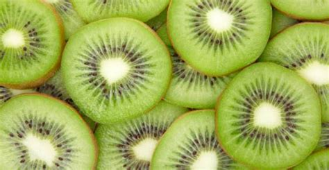 imagenes de memes de kiwi kiwi fruta de mil propriedades usos e benef 237 cios