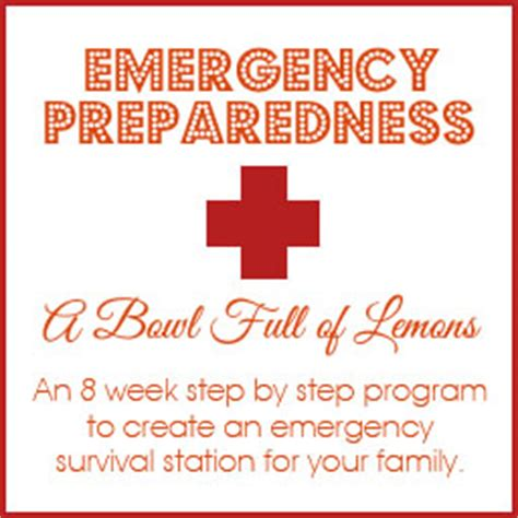 Emergency Preparedness Giveaways - emergency preparedness e book giveaway organizing homelife