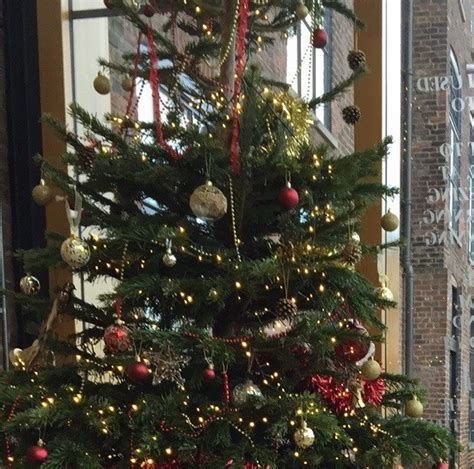 christmas tree competition the round foundry