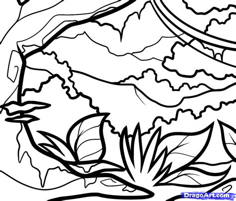 jungle landscape coloring pages how to draw a jungle for kids step by step landscapes