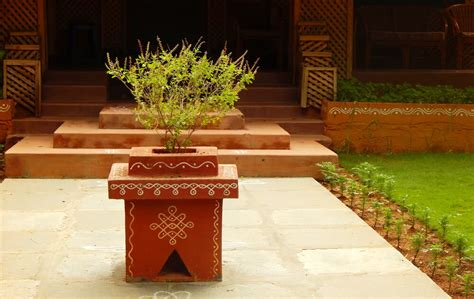 Tulsi Planter by Growing Tulsi How To Grow Holy Basil