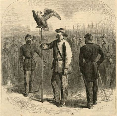 wounded eagle the politically correct of the in kentucky books abe the civil war battle eagle american civil war