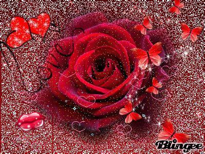 imagenes gif de hacer el amor rosa de amor fotograf 237 a 129509925 blingee com