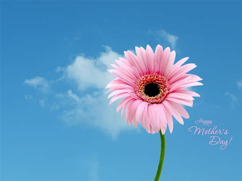Mothers Day Wallpaper S Day Wallpapers Printable S Day Cards By