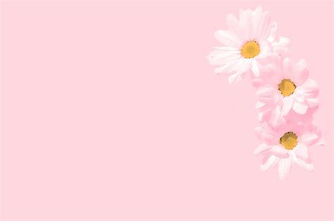 sfondi per lettere letter paper flowers free stock photo domain