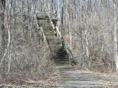 Potato Creek State Park Cabin Rentals by View From The Trail Stairs Picture Of Liberty