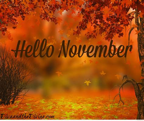 hello november quotes pictures and wallpapers