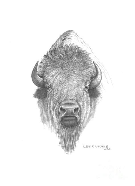 buffalo head tattoo 25 best ideas about buffalo on bison