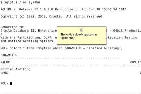 V Audit Oracle by Auditing With Unified Auditing
