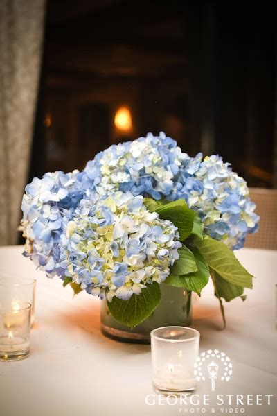 blue hydrangea centerpiece centerpieces blue hydrangea in low leaf lined vase wedding flowers