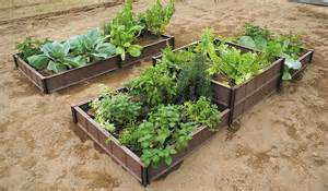 How To Plant A Vegetable Garden In Raised Beds - veggie patch raised garden beds gardening product detail daim daiichi vinyl