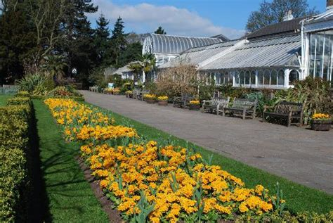 Hotels Near Botanical Gardens Birmingham Birmingham Botanical Gardens And Glasshouses Address Phone Number Attraction