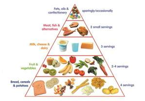 better food pyramid the