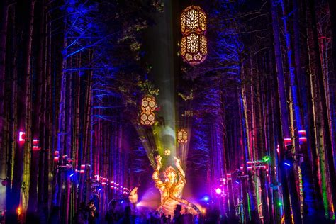Comfort Brand Event In Review Journey Into Electric Forest
