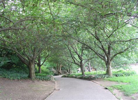 Prospect Park Botanical Garden Botanic Garden Prospect Park
