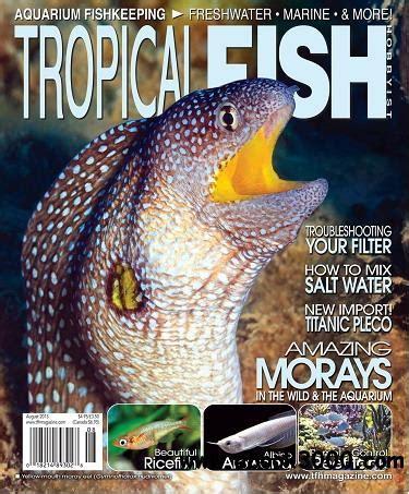 Indecent Tropical Fish Vol 2 tropical fish hobbyist magazine august 2013 free ebooks