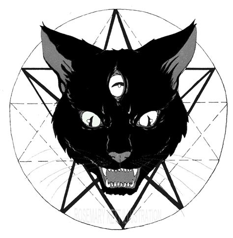 cat skull rosemary elizabeth kett illustration