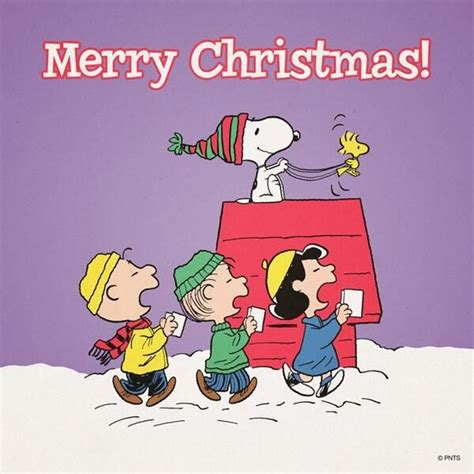 snoopy christmas images merry snoopy quote pictures photos and images for and
