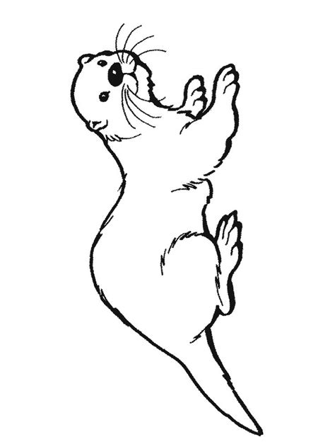 otter coloring pages preschool 329 best images about preschool beach on pinterest
