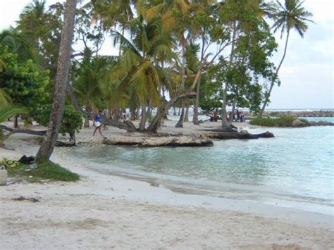 catamaran for sale guadeloupe croisieres catamaran antilles location catamaran guadeloupe