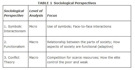 Studying The Meaning Attach To Their Everyday Lives Is The Search For Three Major Perspectives In Sociology