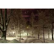Wallpaper Winter Light Snow Trees Night Lights Park