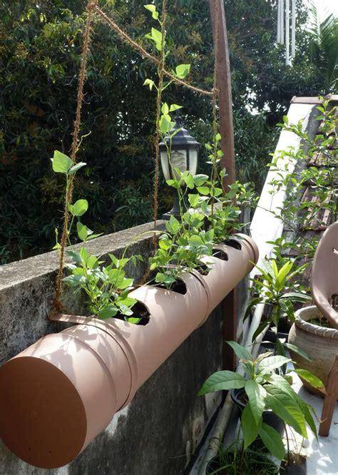 Simple Pvc Planters Intrepid Gardens Pvc Pipe Planter