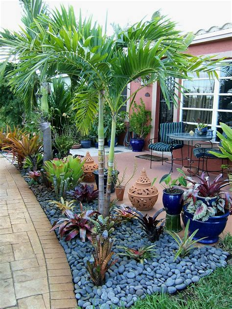 rock garden in florida gardening south florida style bromeliads in the garden
