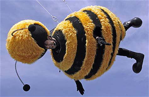 Stylefoul Jerry Seinfeld In Bee Costume by Flight Of The Hollybee Warrior Cats Untold Tales