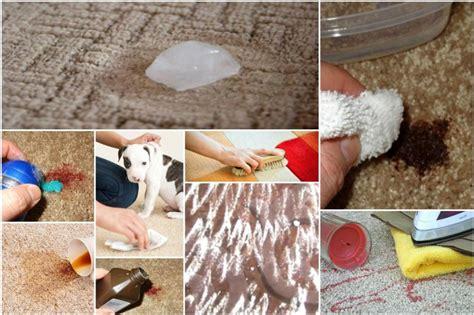 wie bekomme ich kaffeeflecken aus dem teppich teppich flecken entfernen 13542720170707 blomap