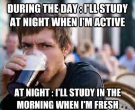 study meme funny pictures quotes memes jokes