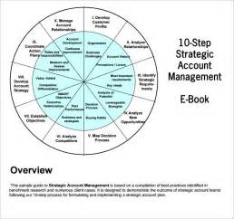 sle strategic account plan templates free