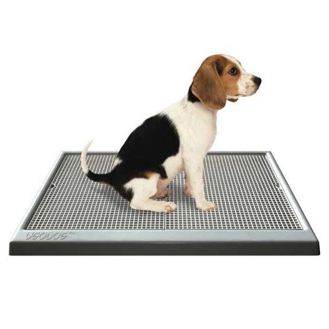 indoor bathroom for dogs ugodog indoor dog litter tray on sale free uk delivery