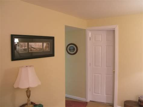 sw jersey yellow wall color