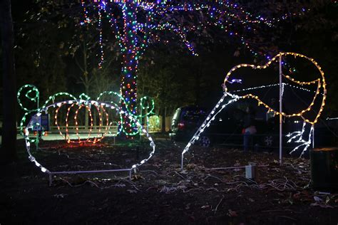 Zoolights Returns To Illuminate The Holiday Season Dc Zoo Lights Dc Hours