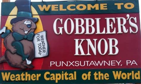 What Is A Knob Gobbler by Punxsutawney Groundhog S Day Debby S Departures