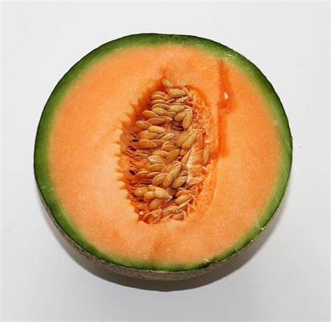 alimentazione antitumorale alimentazione antitumorale di agosto il melone il