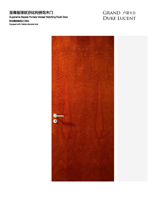 Mohawk Flush Doors by Door Wardrobe Furniture Products By Fortune