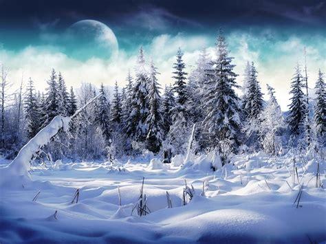imagenes de jardines nevados fondos de paisajes nevados fondos de pantalla y mucho m 225 s