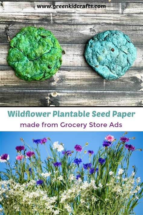 Make Your Own Seed Paper - plantable seed paper from recycled grocery store ads