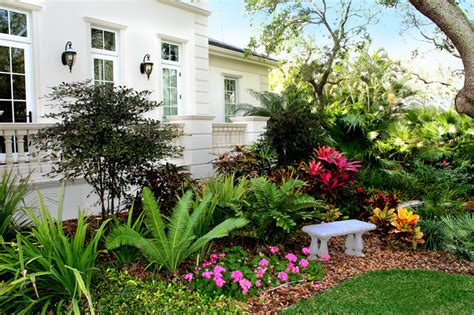 Tropical Front Garden Ideas Siesta Key Front Tropical Landscape Ta By Grants Gardens