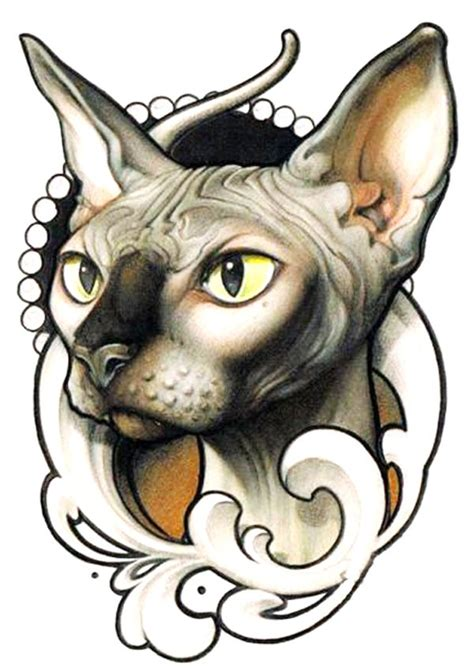 hairless cat tattoo best 25 sphinx ideas on sphynx cat