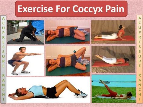 pevic floor exercises to reduce coccyx 1000 images about coccyx management on